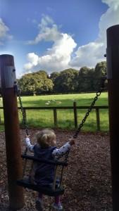 Blarney Swings